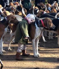 Joggeuse tuée par UN chien, forêt de Retz. - Page 24 20200602103648-7c2b5f6d-2s